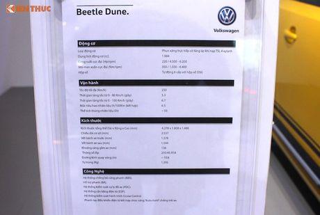 Volkswagen Viet Nam dem Beetle 'fake' den VIMS 2016 - Anh 10