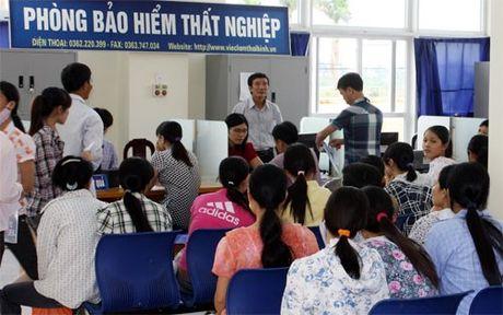 De xuat giam muc dong bao hiem that nghiep - Anh 1