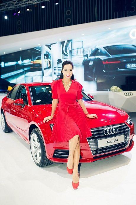 Ngam dan khach quy cua Audi tai VIMS 2016 - Anh 14