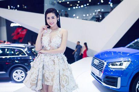 Ngam dan khach quy cua Audi tai VIMS 2016 - Anh 2