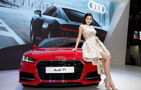 Ngam dan khach quy cua Audi tai VIMS 2016 - Anh 3