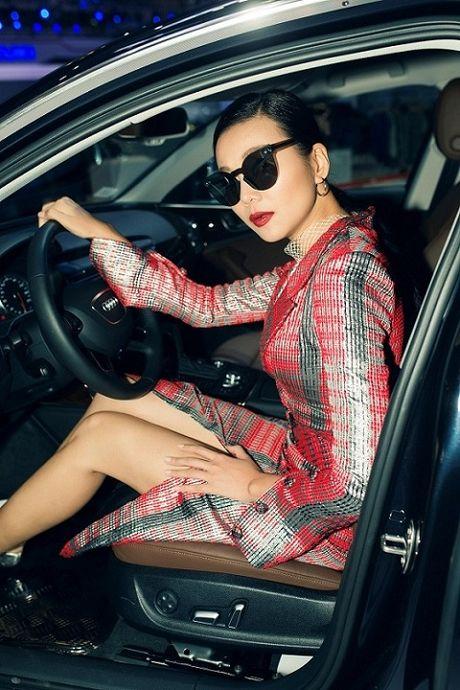 Ngam dan khach quy cua Audi tai VIMS 2016 - Anh 5