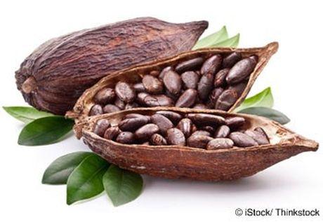 Vu cacao chinh cua Bo Bien Nga o muc 1,27 trieu toi 1,3 trieu tan - Anh 1