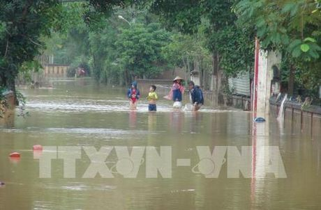 Quang Binh: Mua to, hang tram nha dan ngap trong nuoc - Anh 1