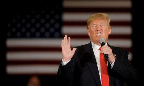 Ket qua tham do co the phan anh sai lech tuong quan Clinton -Trump - Anh 2