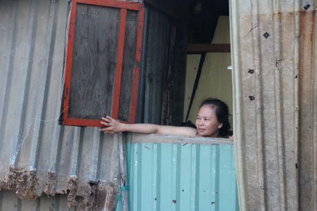 'Khu o chuot' tren bien Quy Nhon - Anh 7