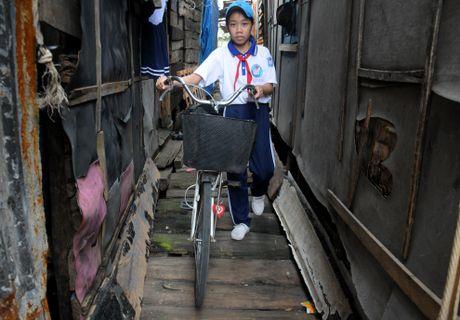 'Khu o chuot' tren bien Quy Nhon - Anh 8