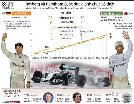 Rosberg va Hamilton tranh dua danh hieu vo dich F1 - Anh 1