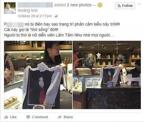 Dan mang Viet buc xuc vi Lam Tam Nhu bi mang len anh tho - Anh 1