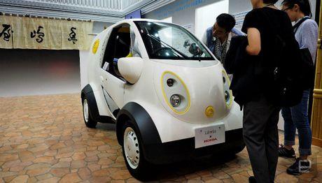 Diem danh cac mau xe in 3D doc nhat hanh tinh (P2) - Anh 19