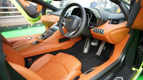 Ngam Lamborghini Aventador mau ran xanh cuc 'doc' - Anh 8