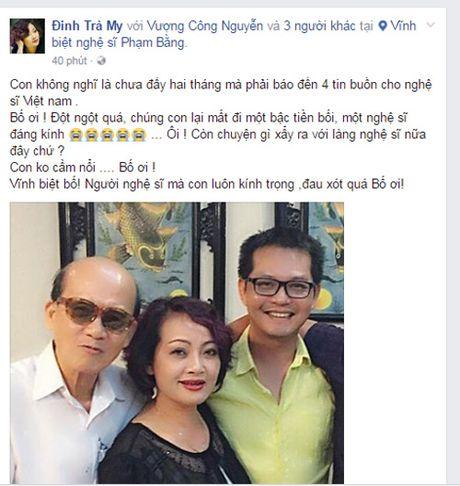 Sao Viet tiec thuong nghe si Pham Bang qua doi - Anh 4
