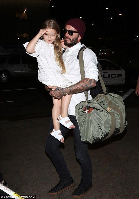 David Beckham cung Harper nhu trung mong - Anh 1