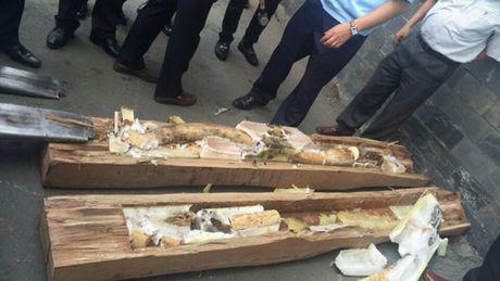 700 kg nga voi nguy trang trong go o cang Cat Lai - Anh 1