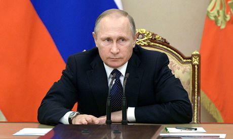Putin ky luat ngung tieu huy nguyen lieu hat nhan voi My - Anh 1