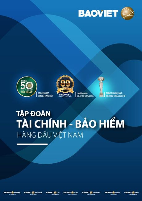 9 thang, Bao Viet hoan thanh hon 90% ke hoach nam - Anh 1