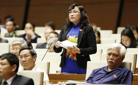 Dai bieu Nguyen Ngoc Phuong: Moi 'ban chi thien' cac du an lam tieu tan nghin ty - Anh 2