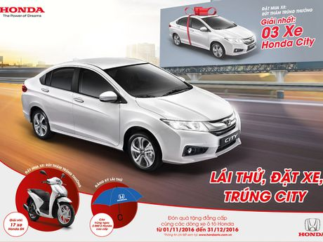 'Lai thu - trung that' o to Honda tren toan quoc - Anh 1