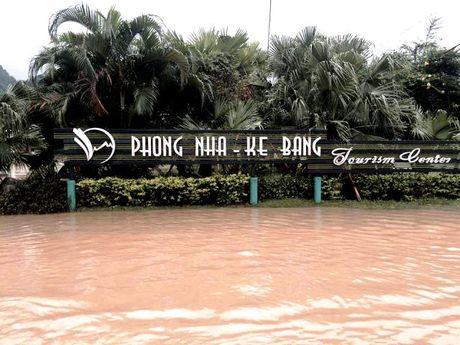 Quang Binh: Hang ngan nha dan lai ngap chim trong nuoc lu - Anh 2