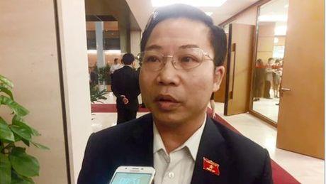 'Bo nhiem nhieu lanh dao la vi dan': Bao bien - Anh 1