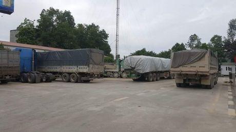 Ninh Binh: Hai thang, phat 3 ty dong xe qua tai - Anh 1