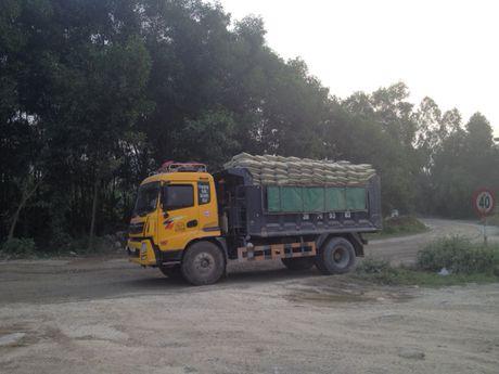 Tram can khong hoat dong, xe qua tai mac suc hoanh hanh - Anh 2