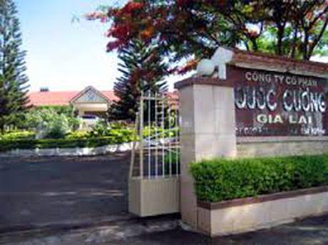 Kinh doanh duoi gia von, Quoc Cuong bat ngo lo gop 21 ty dong - Anh 1