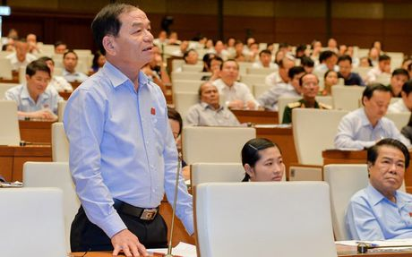 Dai bieu Quoc hoi neu ba tru cot xay Chinh phu liem chinh - Anh 1
