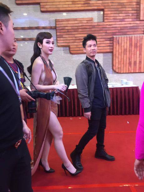 'Soc' voi trang phuc 'ho bao' cua Angela Phuong Trinh tren tham do - Anh 4
