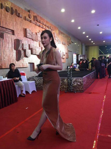'Soc' voi trang phuc 'ho bao' cua Angela Phuong Trinh tren tham do - Anh 5