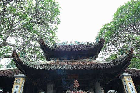 Ki bi gieng nuoc co coc ngoi canh khong bao gio can - Anh 11