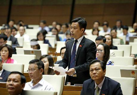 Dai bieu Phung Van Hung: '5 nam ma tai co cau kinh te chua ve den dia phuong' - Anh 1