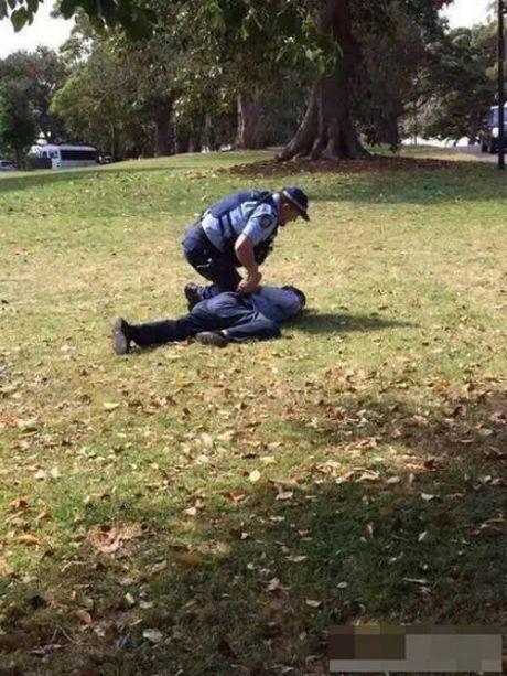Du khach Trung Quoc te bay trong vuon thuc vat o Sydney - Anh 1