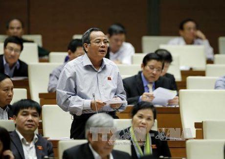 Ben le ky hop Quoc hoi: Tai co cau san xuat nong nghiep theo huong cong nghe cao - Anh 1