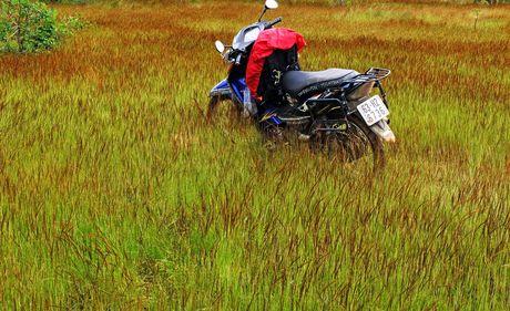 Phuot duong rung va deo dai 250 km tu TP.HCM di Phan Thiet - Anh 2