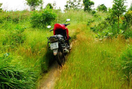Phuot duong rung va deo dai 250 km tu TP.HCM di Phan Thiet - Anh 4