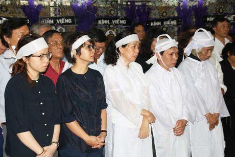 Tien dua dong chi Nguyen Van Chinh ve noi an nghi cuoi cung - Anh 5