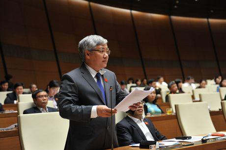 Nhieu chinh sach thuc day phat trien vung dong bao dan toc duoc ban hanh - Anh 1