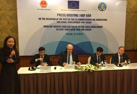 Viet Nam se la trung tam phan phoi hang hoa tai ASEAN - Anh 1