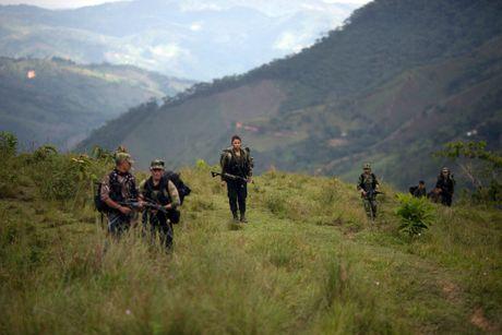 Cuoc song khong tieng sung cua thanh vien FARC o Clombia - Anh 1
