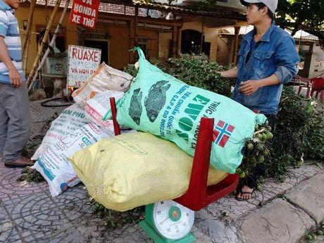 Bat thuong viec mua cau ban sang Trung Quoc lam thuoc… cho dan ong - Anh 2