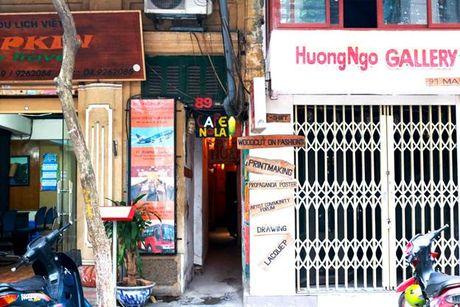 Ngo nho - net dac trung giua long pho co Ha Noi - Anh 9