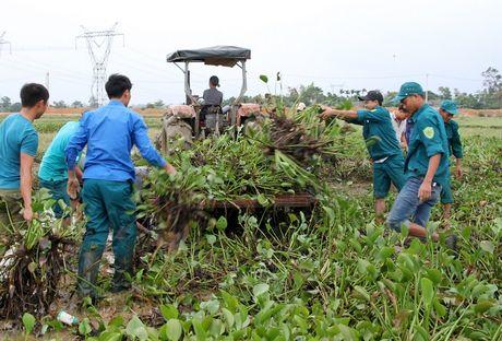 Quang Tri: Beo luc binh 'khung' tran ve sau lu, quan doi ve giup dan lam sach ruong - Anh 4