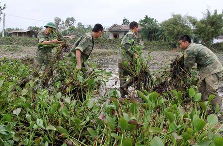 Quang Tri: Beo luc binh 'khung' tran ve sau lu, quan doi ve giup dan lam sach ruong - Anh 6