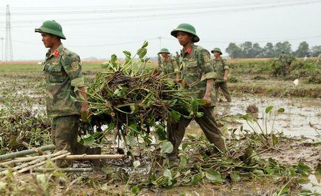 Quang Tri: Beo luc binh 'khung' tran ve sau lu, quan doi ve giup dan lam sach ruong - Anh 7