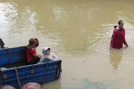Lu lon tan cong Binh Dinh- Phu Yen, 7 nguoi chet, mat tich - Anh 3