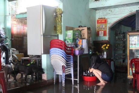 Binh Dinh: Giong loc hoanh hanh, cay xanh bat goc, duong ngap nuoc - Anh 8