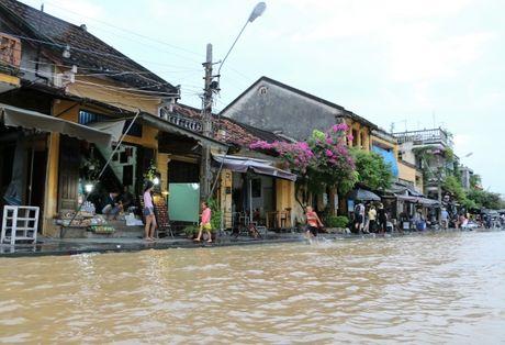 Khach Tay hung thu dao 'pho lut' Hoi An - Anh 1