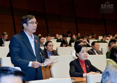 Dai bieu Nguyen Ba Son: 'Doi moi cong tac quy hoach de phat trien manh me kinh te vung' - Anh 1