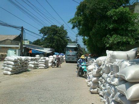 HTXNN Phuoc Hung thuc su la cho dua cua nong dan - Anh 3